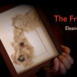 The Fragment